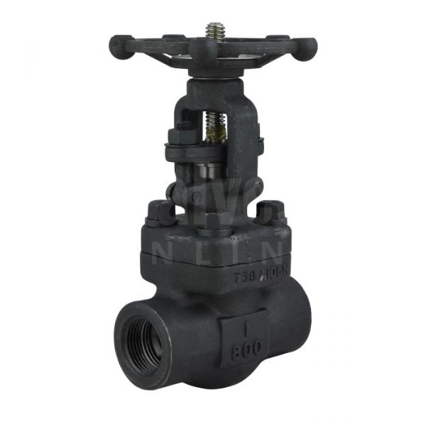 Class 800 Forged Carbon Steel Gate Valve with Bolted Bonnet