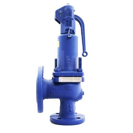 PN40 Nodular Iron ARI SAFE Safety Relief Valve