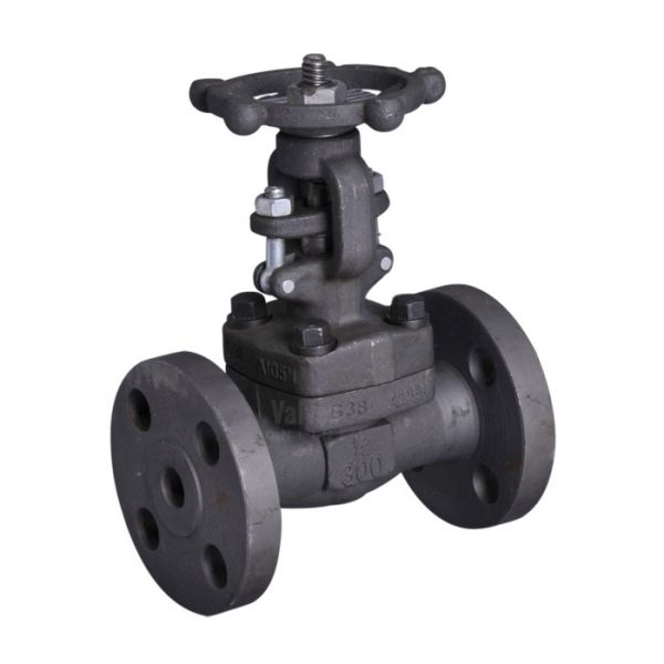 Forged Steel Globe Valve Flanged