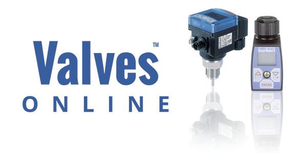 Focus on BÜRKERT Temperature Sensors, Controllers / Transmitters