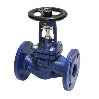 STEAM GLOBE ISOLATION VALVES