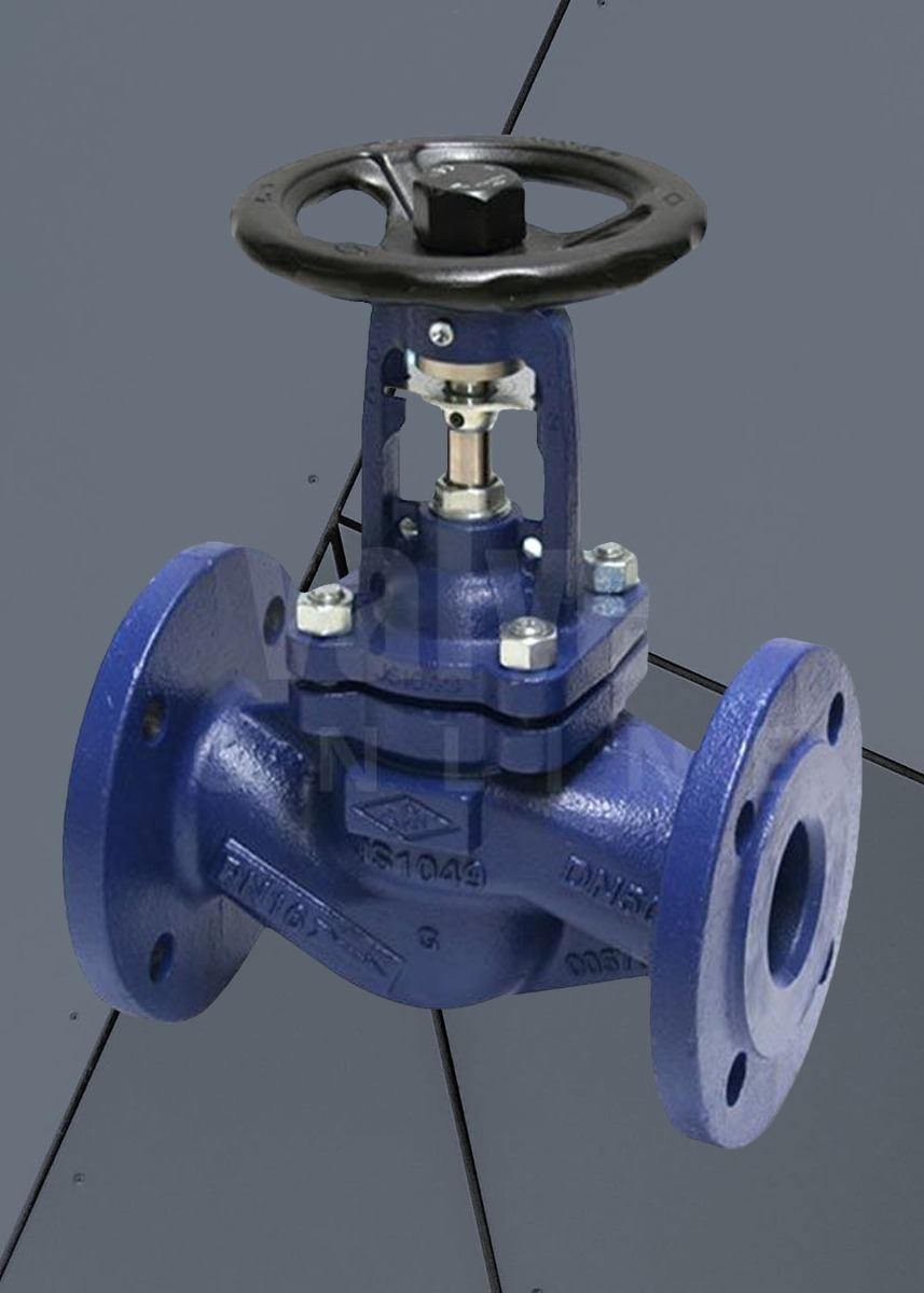 Economy PN16 Cast Iron ARI FABA-Plus Globe Isolation Valve